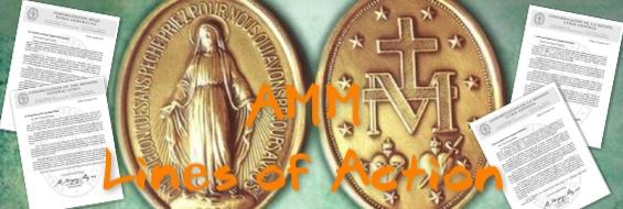 AMM2014-WP-eng