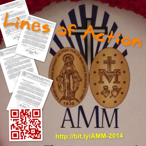 AMM2014-scribd-meme