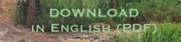 Download English AL15